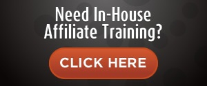 Affiliate Manager Consultation and Training